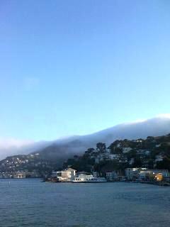Fog by Nick Strada Med Brite
