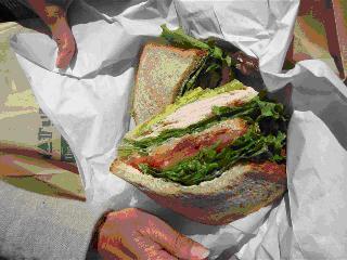 Klevins All American Sandwich Med J